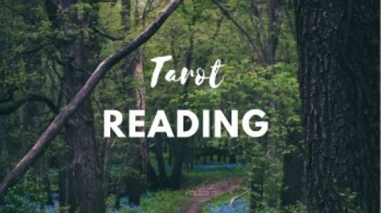 Tarot Readings for August 2019